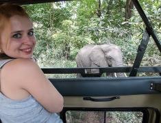 Eva is watching the wild elephants