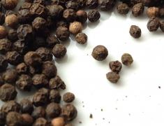 pepper-1292575_1280-1024x1024