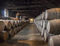 Uskladněné portské víno