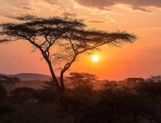 Stmívání nad pláněmi Serengeti