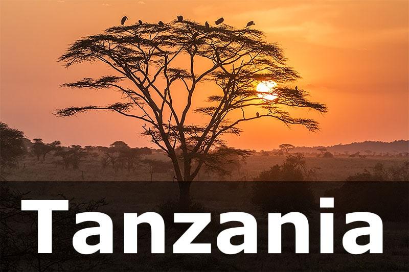 Sunset in Serengeti, Tanzania