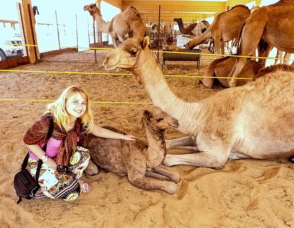 Best 15 Photos Why You Should Visit United Arab Emirates