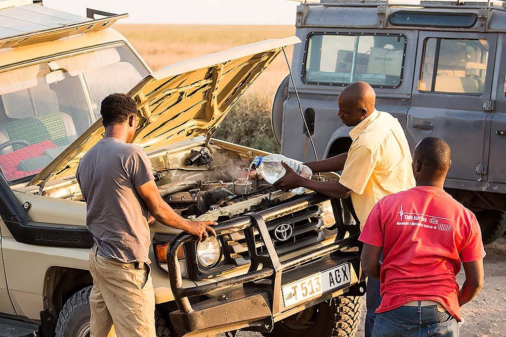 Accident in Serengeti