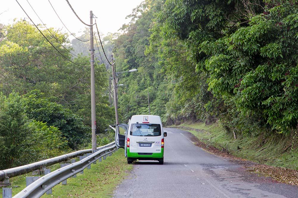 Auto od Junglewalla