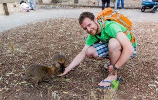 Tom feeds Kangaroos