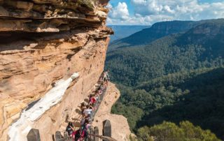 View to track in the Blue Mountains