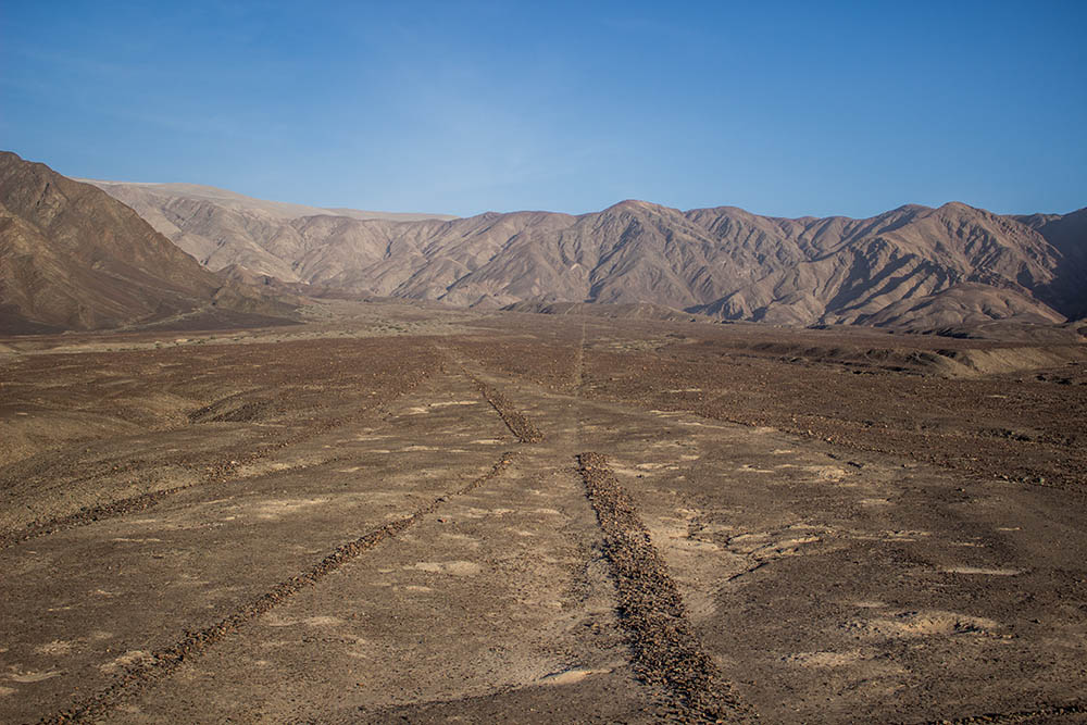 Lines on Nazca's plateau close up