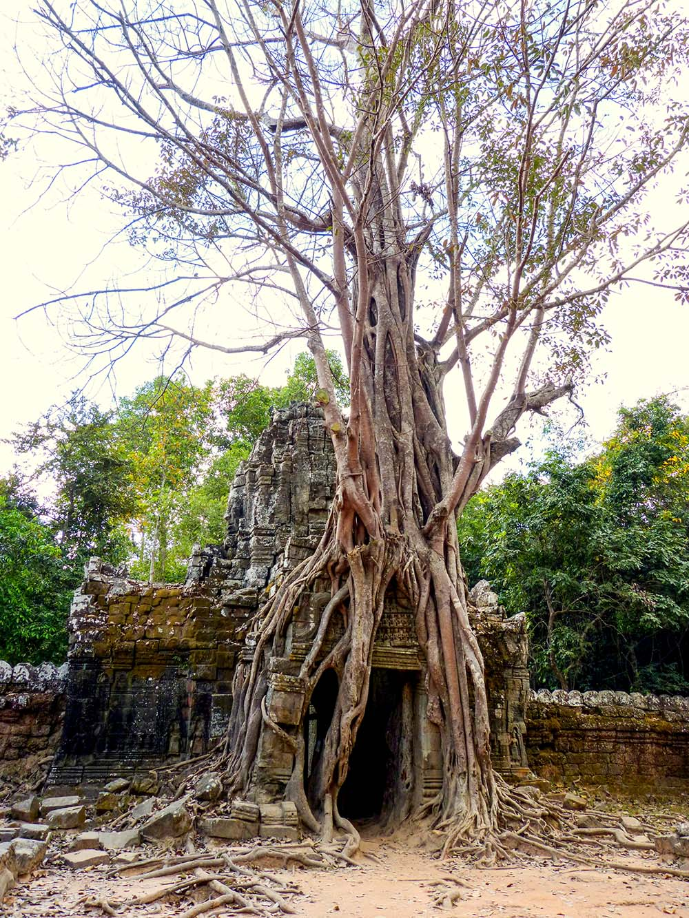 One of the most photogenic places in Angkor Wat
