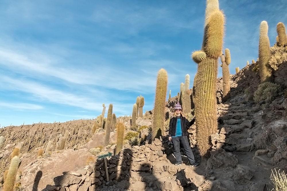 Kaktusy na ostrově Isla Incahuasi, Bolívie