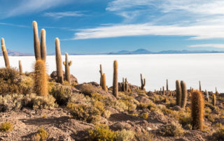 Cactus island - Isla Incuahuasi at Uyuni Slat Flats, Bolivia
