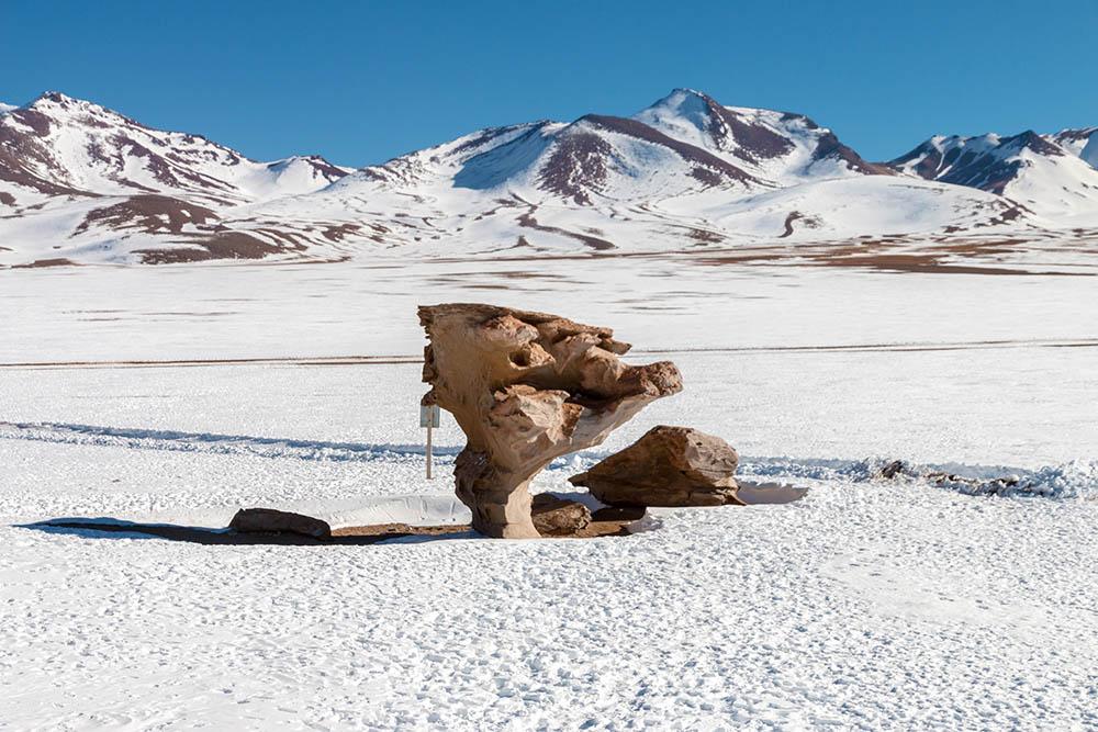 Arbol de Piedra neboli kamenný strom