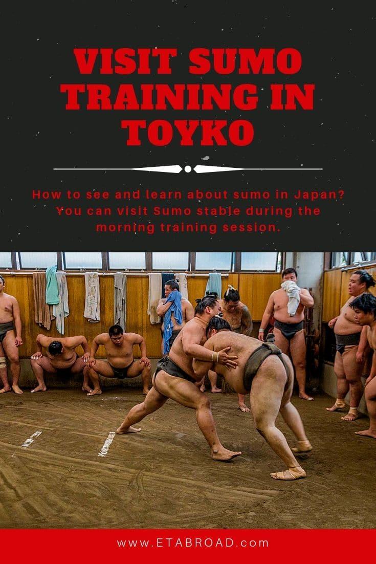 Visit Sumo Training in Tokyo